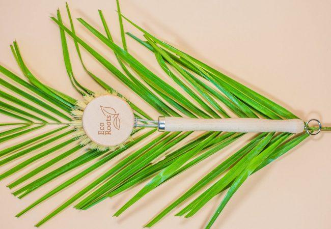 Reusable wooden dish brush