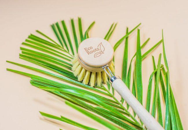 EcoRoots Dish Brush